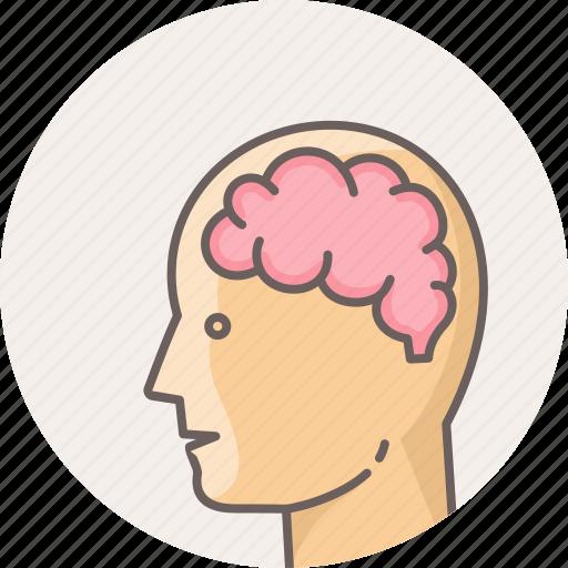 brain, face, head, human, mind, neuro, neurology icon