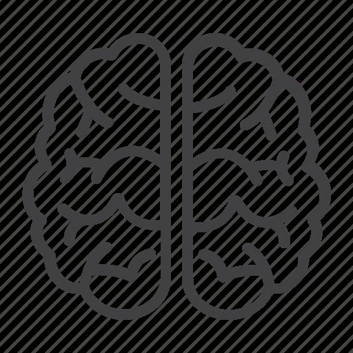 brain, brainstorm, education, idea, medical, science, think icon