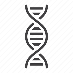 biology, chromosome, dna, education, genetic, health, science icon