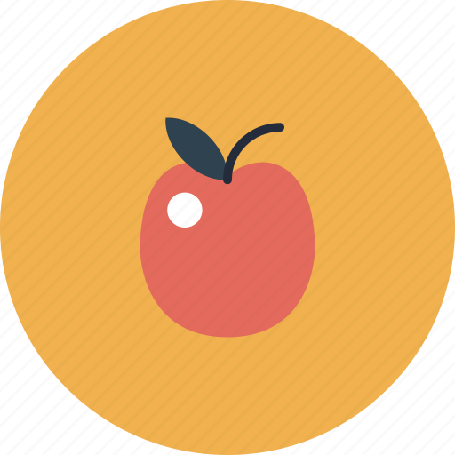 apple, college, education, equipment, experience, fruit, item, knowledge, learn, learning, object, school, science, smart, study icon