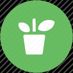 ecology, gardening, leafage, plant, plant pot, sapling icon