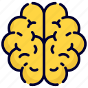 brain, mind, thinking, idea, human, person