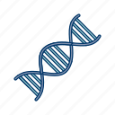 chain, dna, genetics, link icon