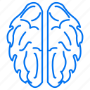 brain, education, studies icon