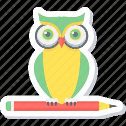 owl teacher, smart classes, teacher icon