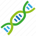 biology, dna, gene, helix, research, science, strand icon