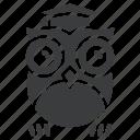 class, knowledge, learning, owl, school, smart, teacher icon