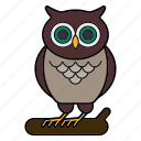 animal, education, owl, wisdom icon