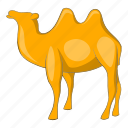 camel, culture, egypt, egyptian icon