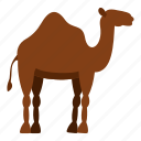 africa, animal, camel, desert, dromedary, egypt, travel icon