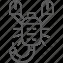 astrology, egypt, horoscope, scorpio, scorpion