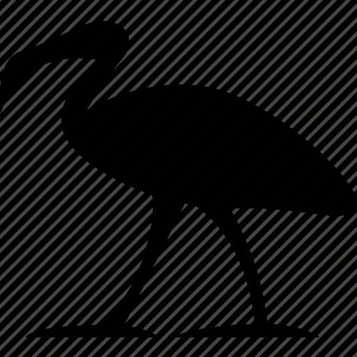 'Egyptian Hieroglyphs' by youtube com/alfredocreates