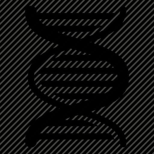 acid, deoxyribonucleic, dna icon