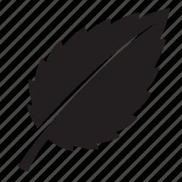 grass, leaf icon