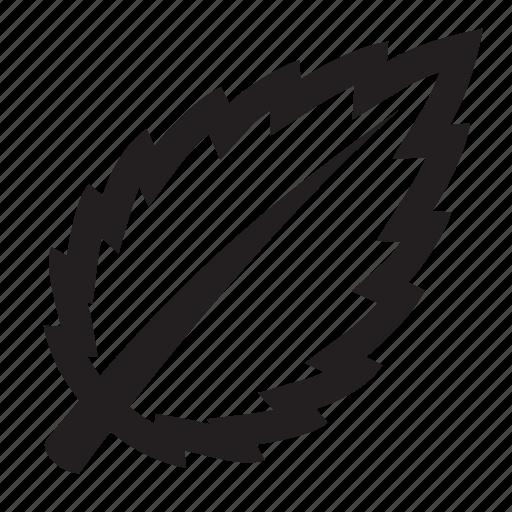 fresh, leaf, news icon