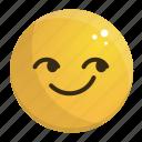 emoji, emotion, face, feeling, smirking icon