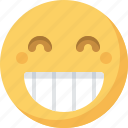 big, emoticon, emotion, expression, face, grin, smiley icon