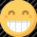 emoticon, emotion, expression, face, grin, smiley