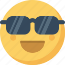 cool, emoticon, emotion, expression, face, smiley, sunglasses