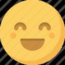 emoticon, emotion, expression, face, happy, smiley