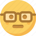 emoticon, emotion, expression, face, nerdy, smart, smiley