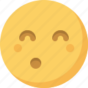 emoticon, emotion, expression, face, shy, smiley icon