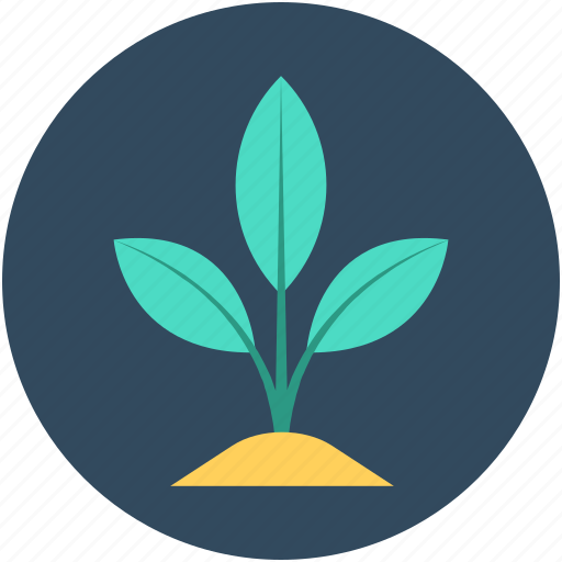 ecology, growing plant, plant, sapling, seedling icon