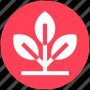 consumption, growing plant, natural energy, plant, sapling