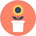 foliage, gardening, plant, pot, potted plant icon