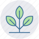 energy consumption, growing plant, natural energy, plant, sapling icon