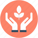 ecology, environment, hand gesture, plant, plant care icon