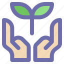 green, growth, leaf, nature, plant