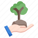 replant, forest, afforestation, ecology, environment, sprout
