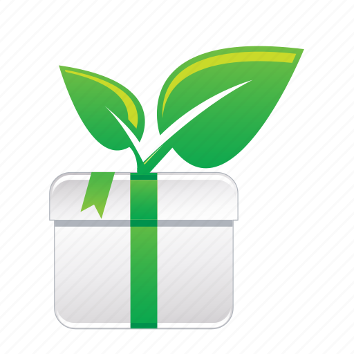 box, decoration, gift, green, present icon
