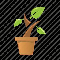 eco, leaf, nature, plant icon