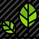 earth, eco, environment, leaf, nature