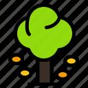 environment, forest, green, summer, tree