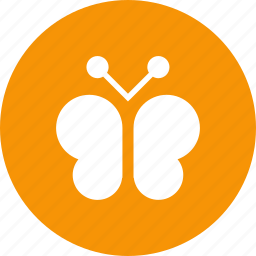 butterfly, eco, flower, nature, spring icon