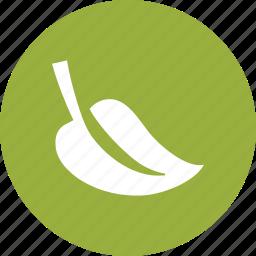 ecological, environmental, foliage, green, leaf, nature icon