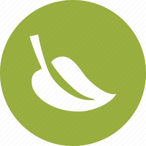 Ecological, environmental, foliage, green, leaf, nature icon - Download on Iconfinder