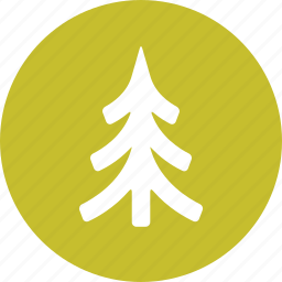 evergreen, forest, fur, nature, tree icon