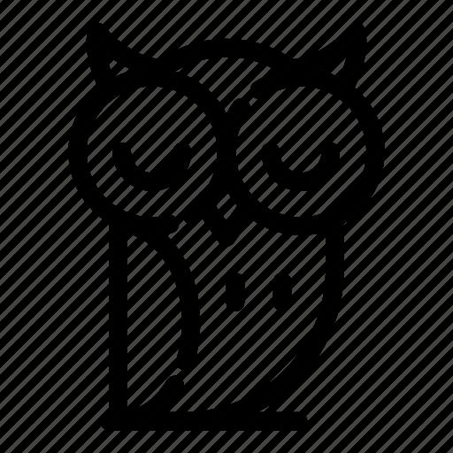 animal, bird, nature, owl, wisdom, wise icon