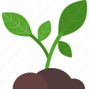 analytics, business, growth, plant icon
