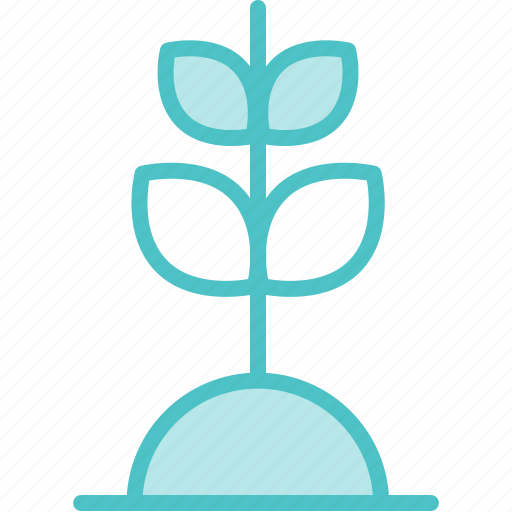 Grow, growth, plant icon - Download on Iconfinder