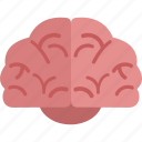 brain, idea, think icon