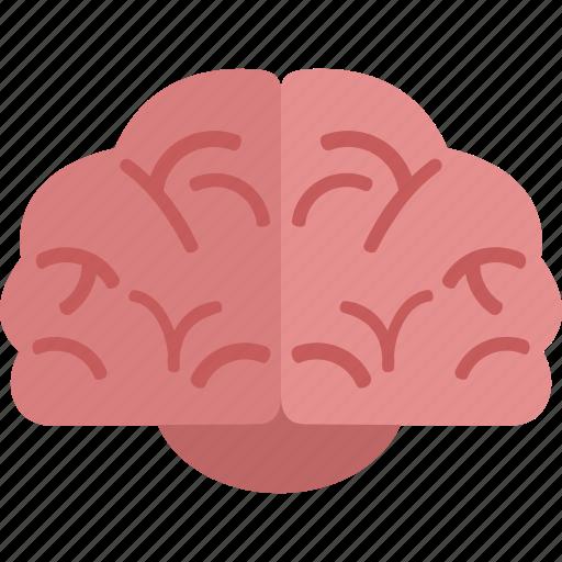 brain, idea, think icon