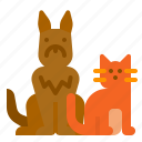 animall, cat, dog, pet