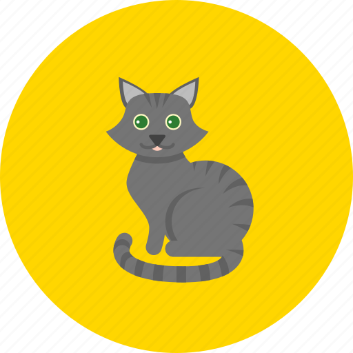 animal, animals, cat, cute, family, kitty, pet icon