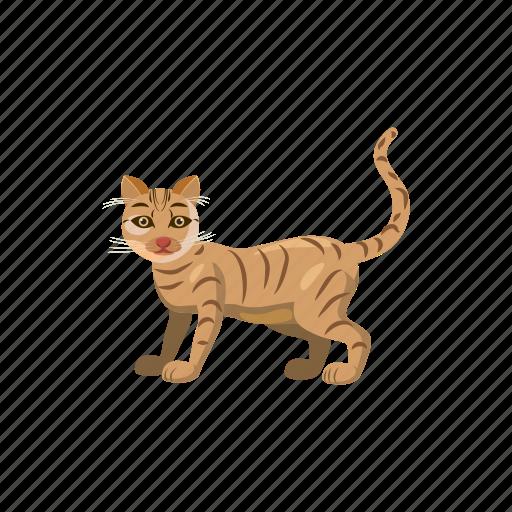 animal, cartoon, cat, cute, domestic, feline, pet icon