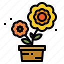 flower, flowering, flowers, garden, nature, plant, pot icon